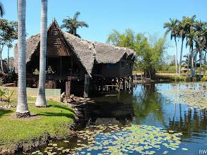 Photo: А в воде крокодилы...