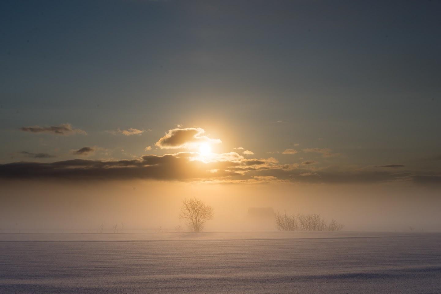 霧に滲む橙色の朝陽