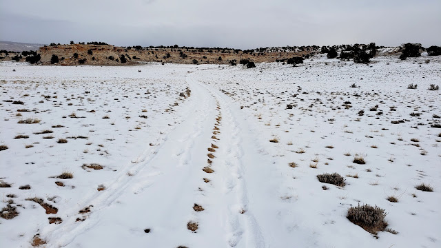 Footprints in the snow across Prickly Pear Flat