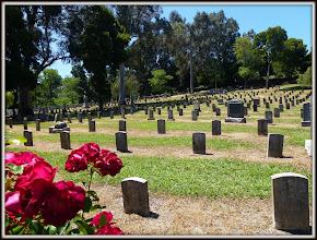 Photo: Mare Island Naval Cemetery, CA