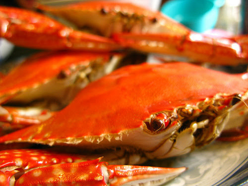 chinese steamed crab