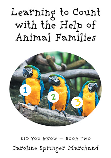 Learning To Count with the Help of Animal Families cover