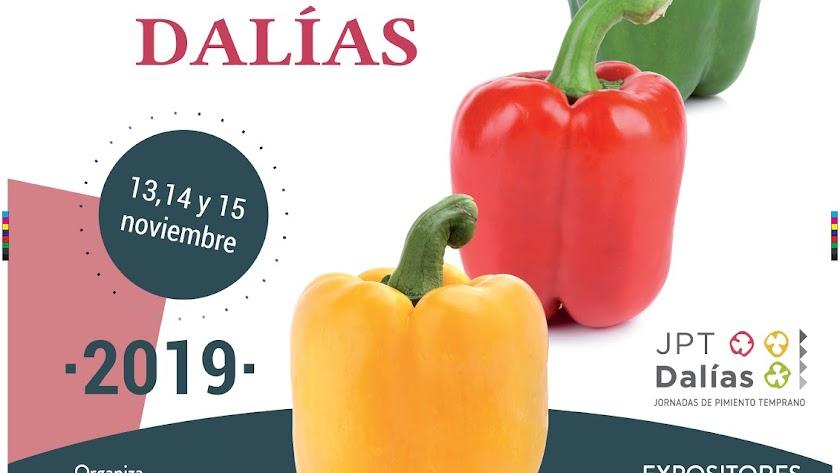 Cartel anunciador de las Jornadas que se celebrarán en Dalías.