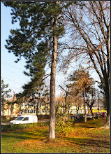 Photo: Turda - Calea Victoriei, parc in Mr.1 -  2018.11.12