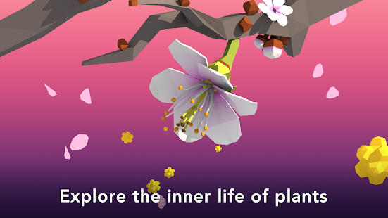 NAMOO - Wonders of Plant Life- screenshot thumbnail