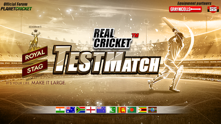 Real Cricket™ Test Match 1.0.4 screenshot 469873