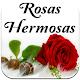 Imagenes De Rosas Hermosas Gratis Para Dedicar