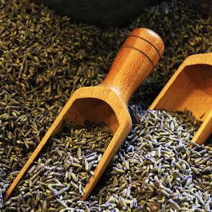 Scoops of Lavender.jpg
