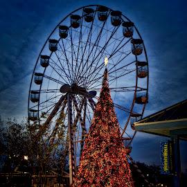 by Jim Antonicello - City,  Street & Park  Amusement Parks (  )