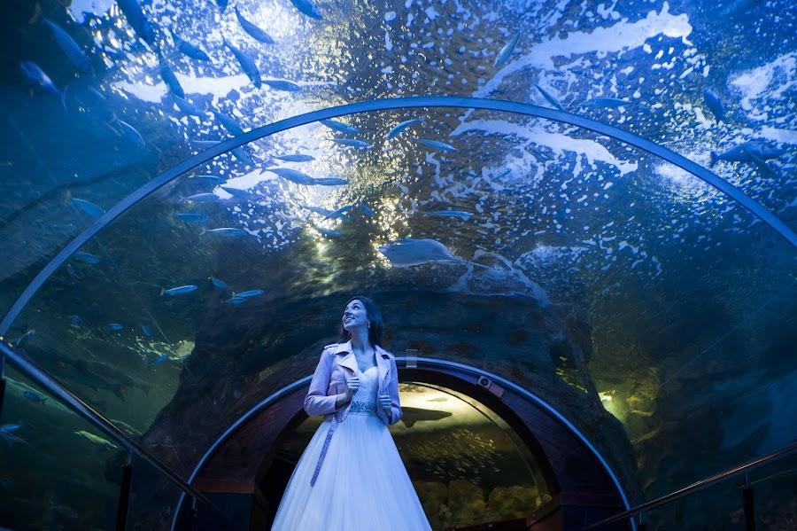 Nhiếp ảnh gia ảnh cưới Pablo Cifuentes (pablocifuentes). Ảnh của 06.09.2016