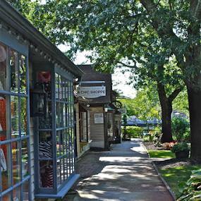 Closing Time by Susannah Lord - City,  Street & Park  Markets & Shops ( shops, windows, walkway, shade, deserted, sidewalk,  )