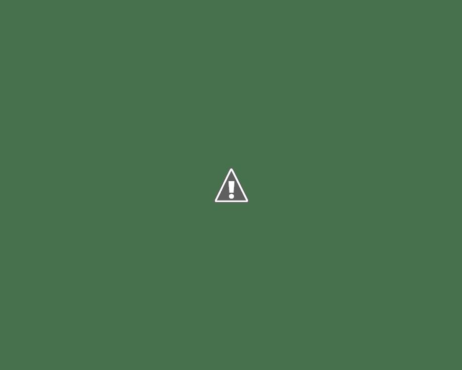 羅臼町の街並みと羅臼岳