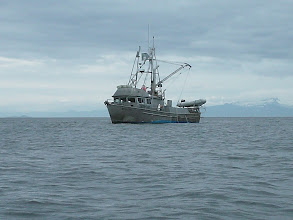 Photo: A commercial fishing boat in Frederick Sound.