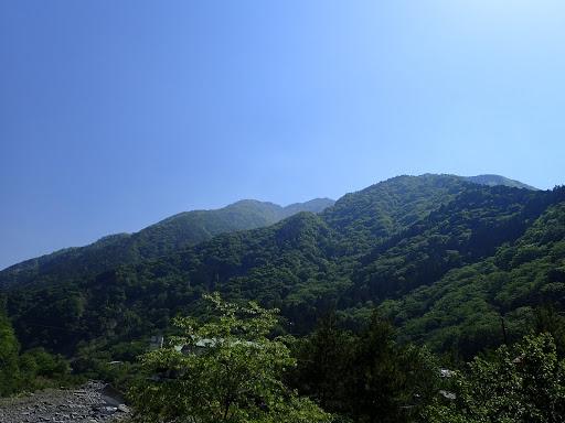 七面山を仰ぎ見る