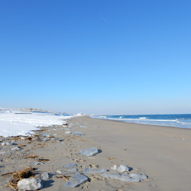Winter Beach Scene by Kristine Nicholas - Novices Only Landscapes ( water, icy, waterscape, sea ice, snowy, sea, ocean, seascape, beach, landscape, sea grass, winter, cold, blue, ice, seaweed, snow, reservation, seagrass, waterway,  )