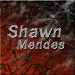 Lyric and Songs Shawn Mendes icon