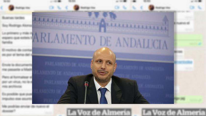 Rodrigo Alonso, presidente de Vox en Almería.