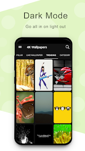 4K Wallpapers – Full HD Wallpapers App Latest Version  Download For Android 5