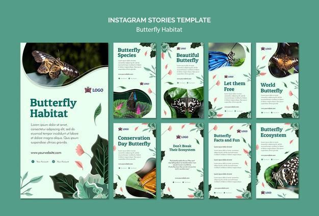 E:\статьи\butterfly-habitat-concept-instagram-stories-template_23-2148641877.jpg