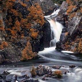 Aubrey Falls by Tammy Scott - Landscapes Waterscapes ( waterfalls, nature, waterscape, waterfall, nature up close, nature photography, nature close up, landscape )