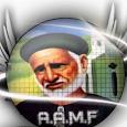 AAMF vesion 1.0