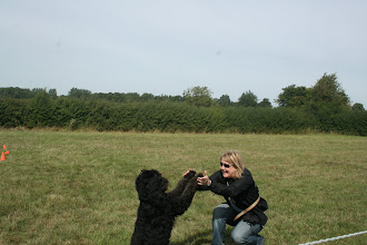 Photo: DogBasics Fun Day 2013 - Best Trick winner Ralph Labradoodle finishing his routine with Lisa.