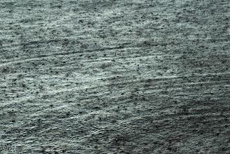 Photo: Rain on the Water For +Monochrome Mondaycurated by +Hans Berendsen+Jerry Johnson+Manuel Votta+Nurcan Azaz& +Steve Barge #MonochromeMonday