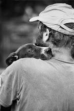 Photo: dog at farmer's market