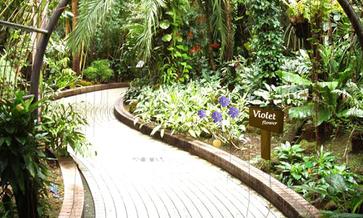 玩免費解謎APP|下載Escape From Botanical Garden app不用錢|硬是要APP