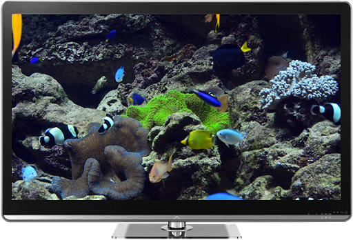Screenshot for Aquariums on TV via Chromecast in United States Play Store