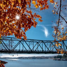 German Creek Bridge by Ron Plasencia - Buildings & Architecture Bridges & Suspended Structures ( german creek, ron plasencia, cherokee lake, grainger county, bridges )