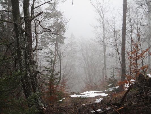Sentiero di montagna di LunaStorta