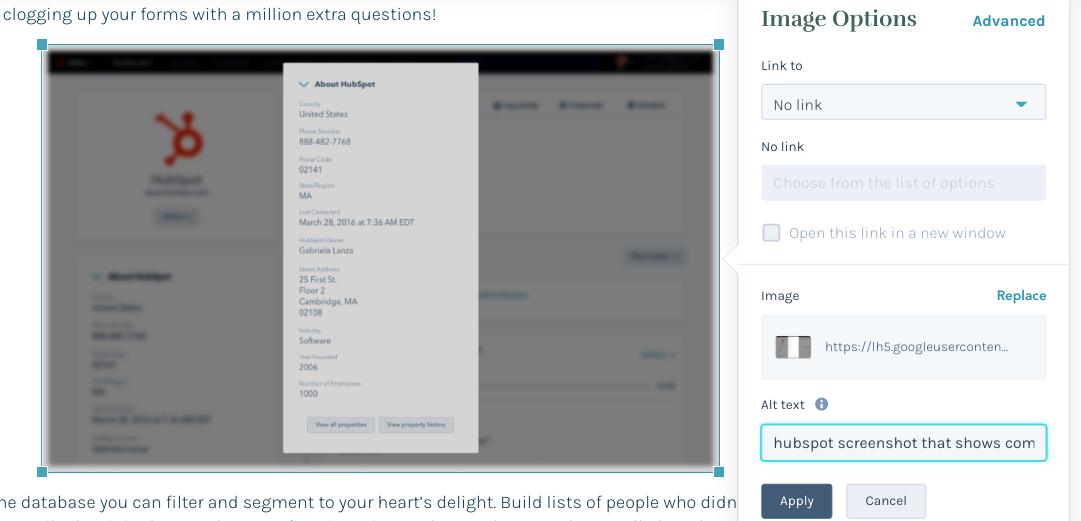 HubSpot screenshot showing alt text