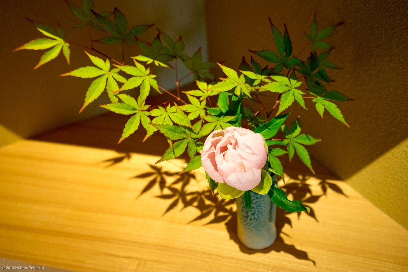 棚に飾られた麗しい花