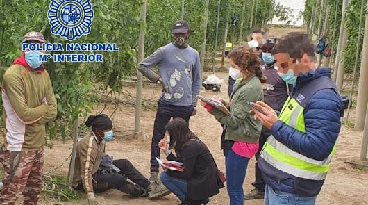 Detenido un empresario agrícola por acosar sexual y laboralmente a una empleada