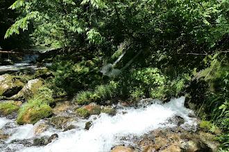 円原の伏流水