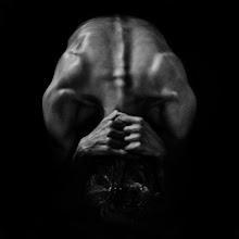Photo: Skull