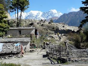 Photo: Im Hintergrund die Nilgiri Gruppe.
