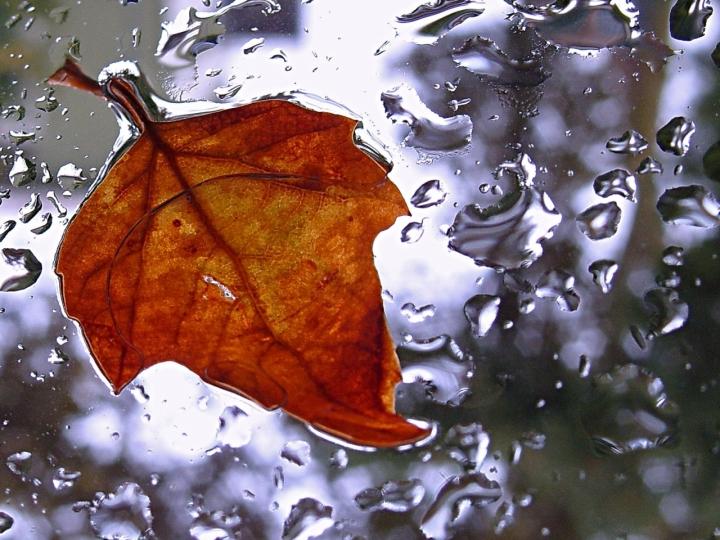 Nostalgia di www.fioregiallophoto.it