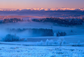 Photo: Everybody wishes there is lots of snow in winter and I'm no exception. But I also appreciate dry and very cold periods that have been occuring over the last few years more often than ever before. When mixed with mist, it can completely change a character of a landscape and create very different shapes, patterns or colors (and their various combinations) from what we normally expect to witness.  I arrived right at the sunrise with potential scenes already scouted previous days. Although frozen grasses and trees looked very promising, the thick fog surrounded me all round. But just a little later, rising sun started to burn it together with the frost, creating spectacular contrast between lit and shadowed parts of the scenery. It was amazing to stand there freezing and watching the fascinating transition from cold to warm, from blue to red, from winter to spring...