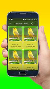 Canto de Canário da Terra Campeao Offline - náhled