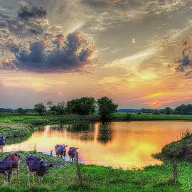 by Karen McKenzie McAdoo - Landscapes Sunsets & Sunrises