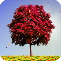 Autumn Trees Live Wallpaper icon