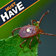 Lyme Disease Sypmtoms And Cure