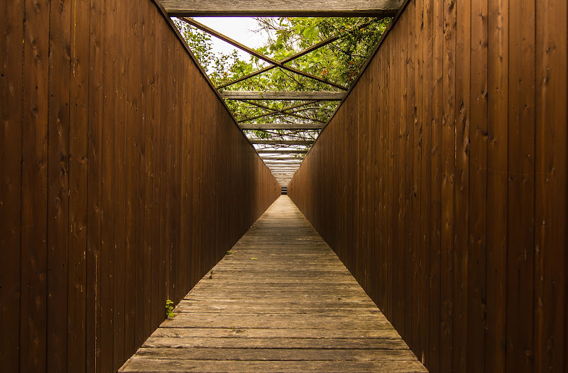 Linee prospettiche di GbPhoto
