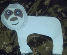Photo: a sloth