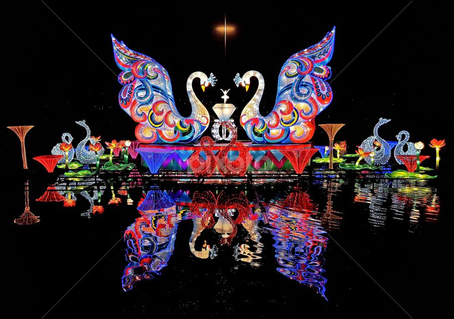 Holiday Wonder by Jerry Ehlers - Public Holidays Christmas ( holiday, lights, christmas, public )