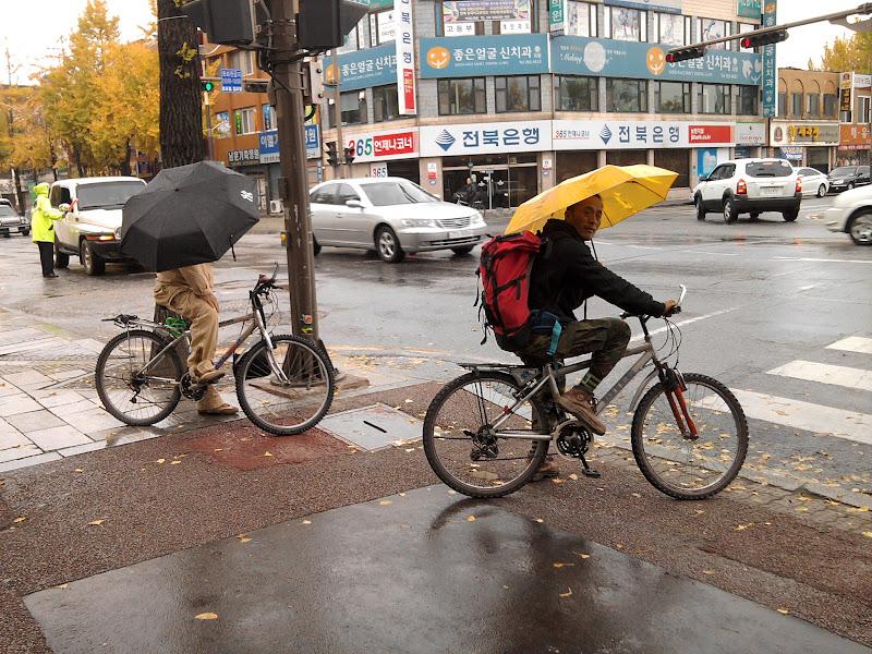 Photo: Kažkada iš manęs juokėsi nemažai žmonių ir siūlė imti skėtį važiuojant dviračiu. Visgi Korėjoje žmonės taip važinėja.