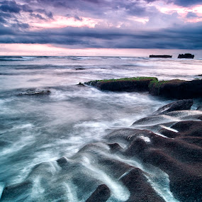 Wet Rocks by Frans Widi - Landscapes Beaches