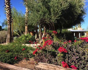 The Inn at Rancho Sonora